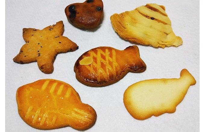 湘南の美しい海をイメージした焼き菓子ギフト(イル・ド・ショコラ)