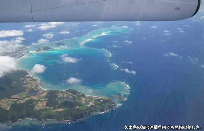 驚異の鮮度感! 沖縄・久米島の活け締め冷凍車エビ