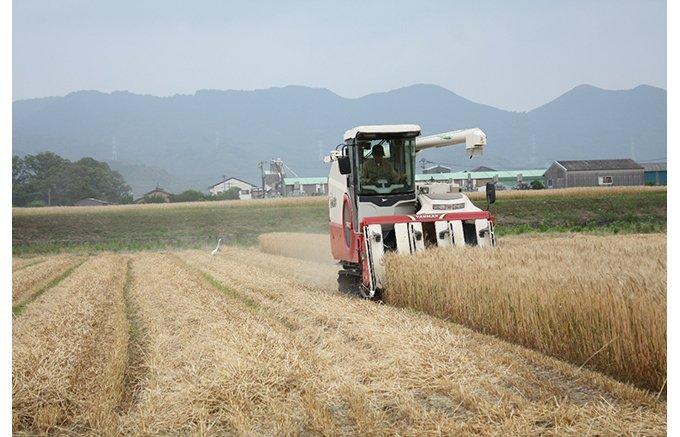 小麦の全国生産2位!福岡県産小麦だけで作る、田中製粉の「亀特上」と「亀」