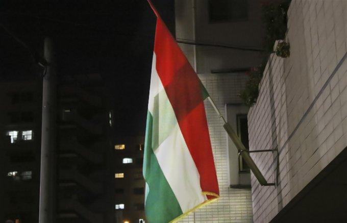 「食べられる国宝」マンガリッツァ豚とハンガリーワイン。ハンガリー大使館前夜祭