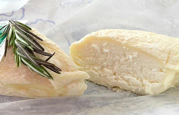 今が旬!黄金の手作りシェーブル(山羊のチーズ)!