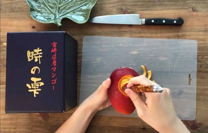 赤く艶やかな美味しい宝石 宮崎県産マンゴー「時の雫」