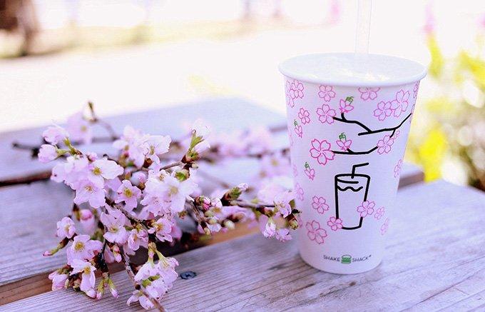 桜シーズン間近!フレッシュに、そして濃厚に。うららかな春の訪れを味わおう。