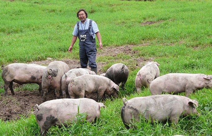 北海道の自然の恵みが美味さを引き立てるエルパソ豚牧場の「どろぶた」