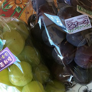 なんと、善玉菌の代表である「乳酸菌」を使って栽培したぶどうが岡山にあった。