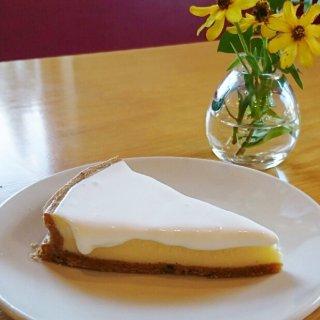 酸味とコクのバランスが素晴らしい!大人のためのチーズケーキ
