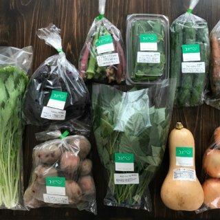 ホテルのシェフ達に愛される味濃厚お野菜「エビベジ」をご自宅で!