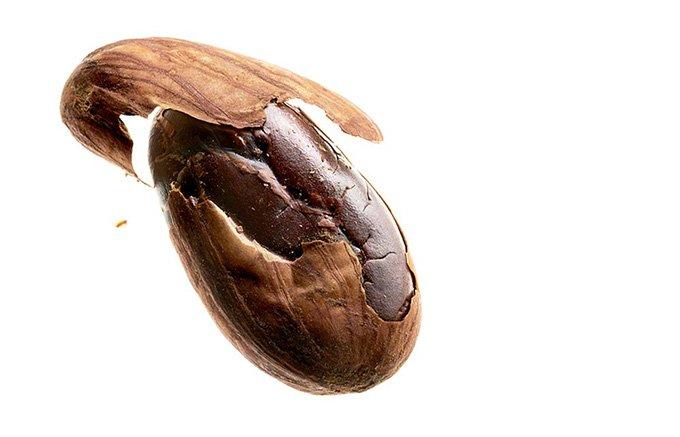 チョコレートが女神に恋をした!バーニーズ ニューヨーク オリジナル チョコレート