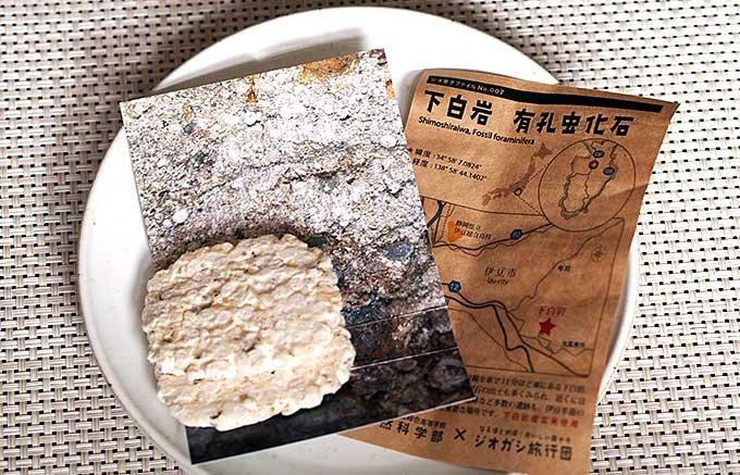 詰め合わせはまるで標本。溶岩や地層などがお菓子になった!ジオ菓子とは!?