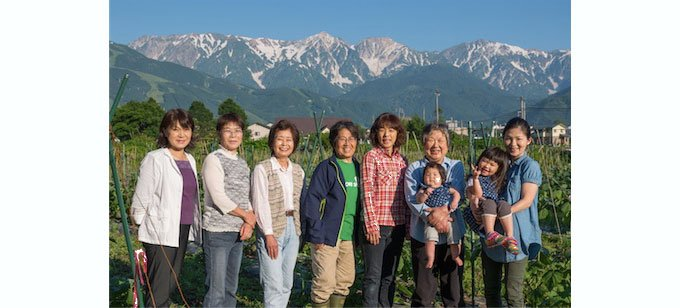 長野県白馬村で発見!糖度も高くジューシーさと酸味が美味しい「食用ほおずき」