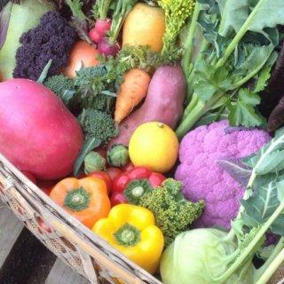 体にいいだけじゃない!食べるのがもったいなくなる彩豊かでおしゃれな野菜