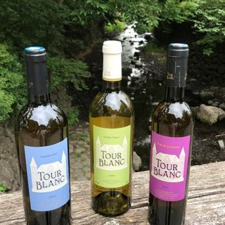 世界的支持を集める「自然派ワイン」というスタイル