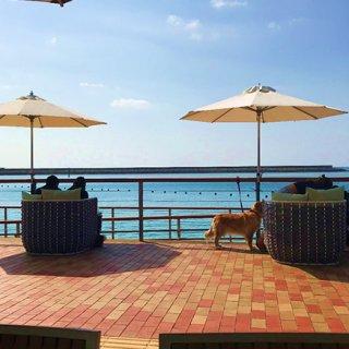 食べて旅して綺麗になろう:沖縄編PART2