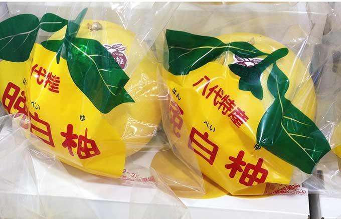 2015夏限定!葉山マーロウの晩白柚×アブソルートウォッカで作った大人のジュレ