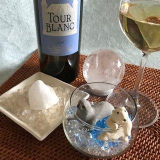 涼しげな夏向き自然派白ワイン・アルマニャック産「シャトー・トゥール・ブラン」