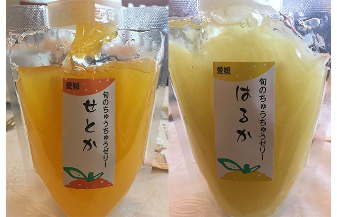 完熟果汁で作った柑橘の香り高いゼリーは、これからの受験シーズンにもおすすめ