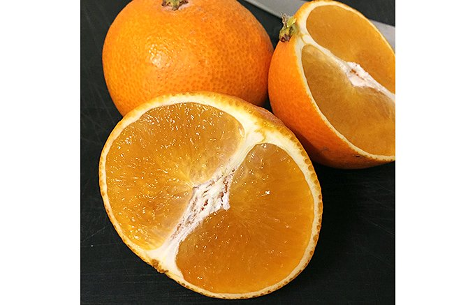 美味しくて、食べやすい愛媛生まれ話題の新柑橘「紅まどんな」