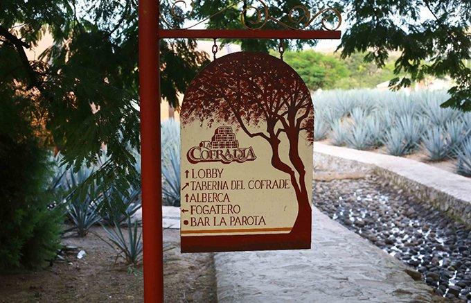テキーラ好きなら泊まりたい「MATICES HOTEL DE BARRICAS」