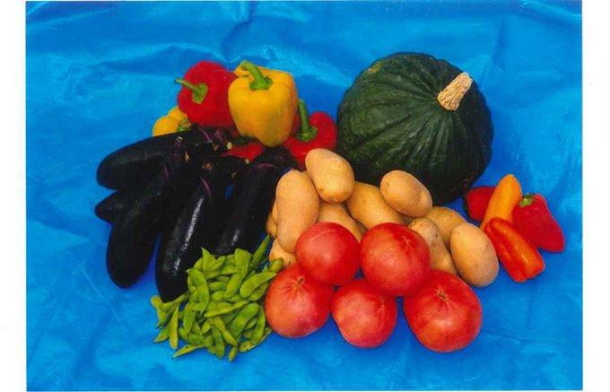 寒暖の差が野菜本来の味を生み出す!甘味や苦味もしっかり味わえる「野菜」!