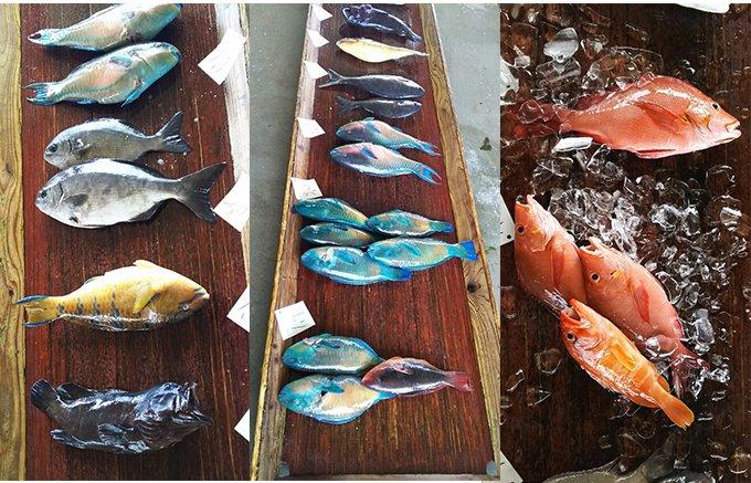 カラフル!ありそうでなかった沖縄県産魚の干物