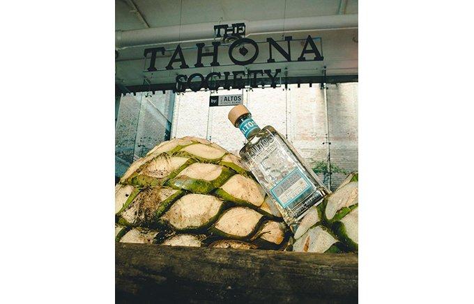 環境を守りながらテキーラ業界の最先端を行く「オルメカ・アルトス」