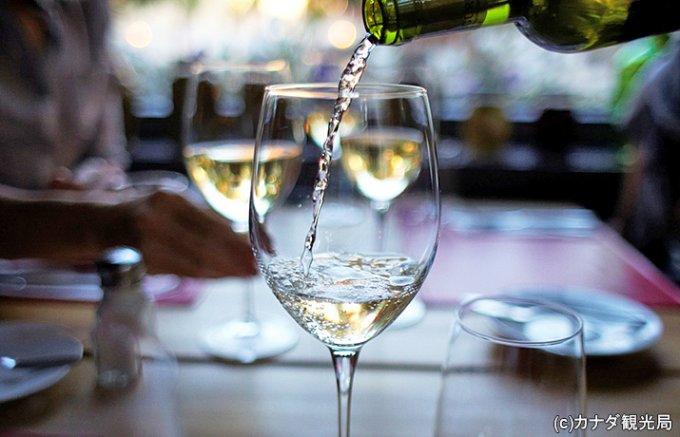 ワイン作りに理想的な環境であるカナダの「カナディアンワイン」に注目!