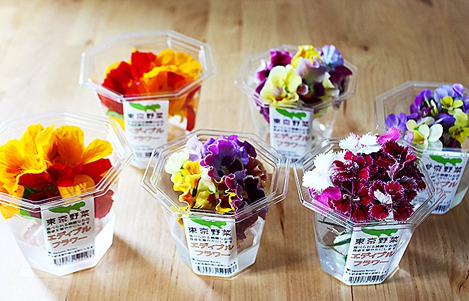 お花を五感で楽しむ!1つ1つの花びらが本当に美しい「お花野菜エディブルフラワー」