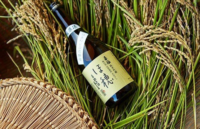 「センスがいいと褒められたい!」日本酒を知るその道のプロ達が認めた逸選銘酒5選