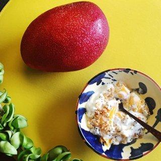 この夏はトロピカルに!盛旬の南国フルーツ「マンゴー」「パイン」を味わい尽くす!