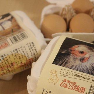 【新潟県】味の違いを楽しめるバラエティ!平飼いで育てた「地鶏卵5種セット」