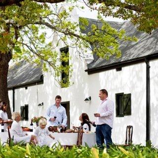 世界自然遺産に広がるブドウ畑から届く350年の歴史を持つ秀逸な南アフリカワイン