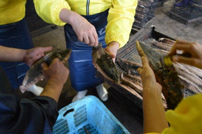老舗料亭で愛用される指宿産鰹節「本枯れ節」