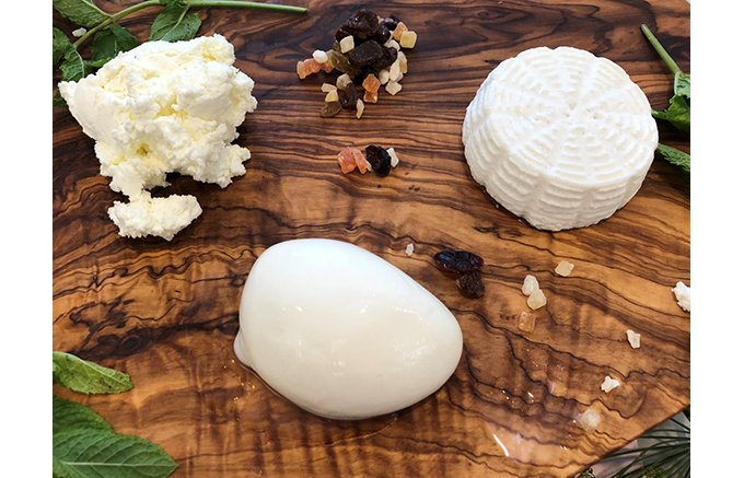 NEW OPEN!本土最南端の手造りチーズ工房『Kotobuki CHEESE』
