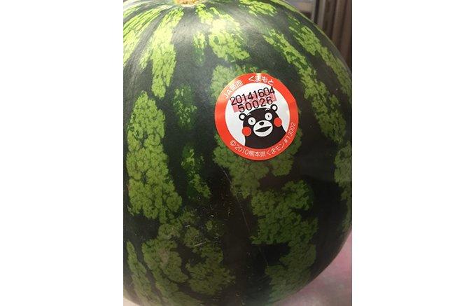 日本有数の産地である熊本県産スイカを食べて熊本を応援しよう!