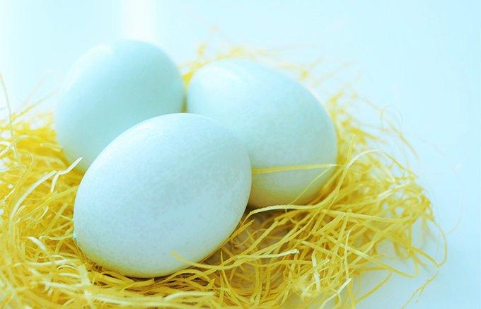 こだわる人へのお祝いギフトに 世界で唯一の幸せの青い卵