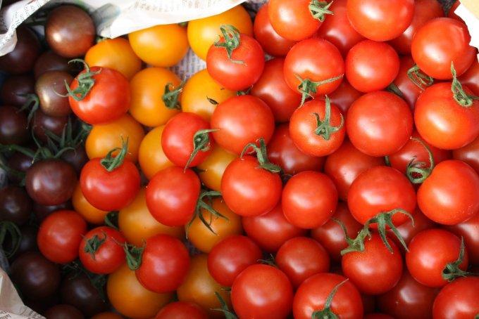 宝石のように輝く!甘み十分でスイーツにも使えるミディトマトとミニトマト