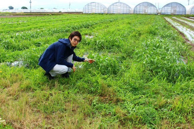 【福岡県】農薬不使用の玉ねぎが26%!のたまねぎドレッシング