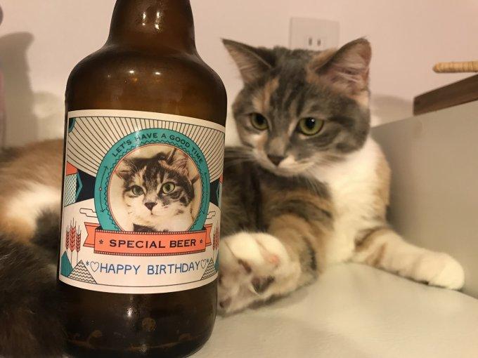 世界にひとつ!とっておきの写真でつくる自分だけのビール!