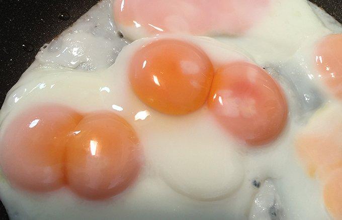 ラッキーの詰め合わせ!黄身が2つでテンションアップの双子の卵「二黄卵」