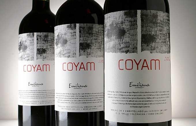 【ワイン好きに贈れるワイン】もう迷わない!初心者でも安心して贈れる赤ワイン5選