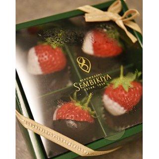 香川県の苺 クイーンストロベリーを使った千疋屋の「クイーンストロベリーチョコ」