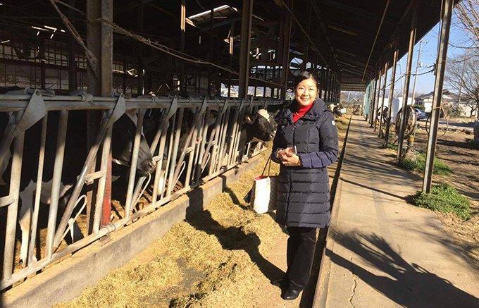 牛をこよなく愛する牛飼い、松井さんプロデュースの満点ハンバーグ