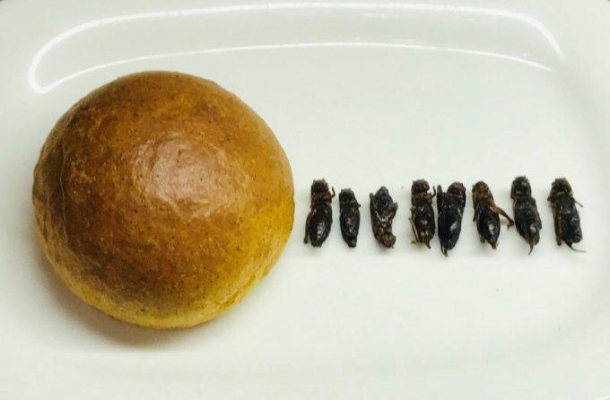 未来を救う!『みんなのパン』の食用こおろぎ使用の低糖質の「大豆こおろぎぱん」
