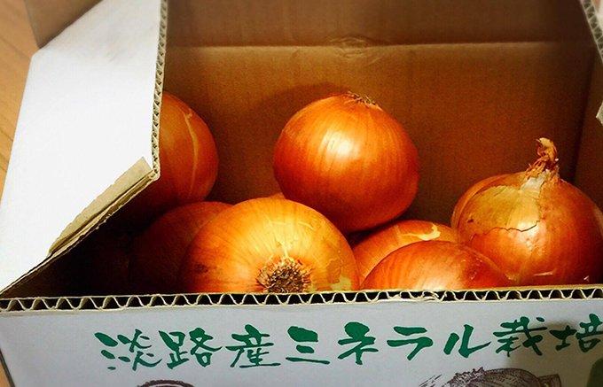 この時期お取り寄せしてでも食べたい!淡路島産最高級玉ねぎ【元氣玉】