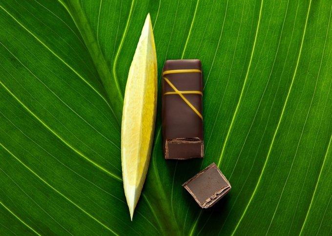 「ラ・メゾン・デュ・ショコラ」から身体と環境に優しいビーガン仕様のショコラが誕生