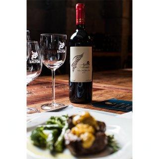 南米の宝石 「サルトンワイン」エレガントさと力強さ、そしてフルーティなアロマ