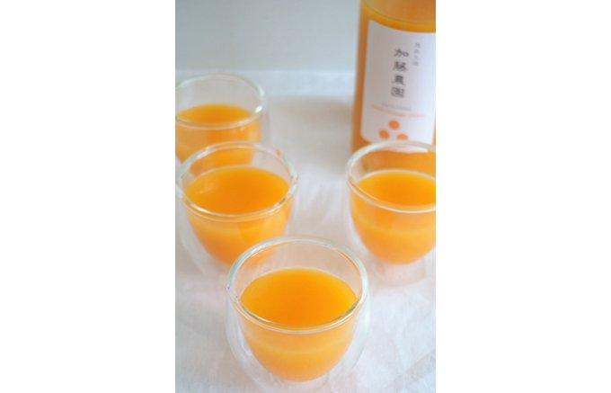 酸味と甘みが絶妙!丸ごとみかんの風味が楽しめる、加藤農園の「湘南みかんジュース」