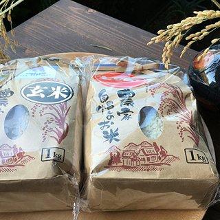 アイガモを使った自然農法で育てた新潟コシヒカリ