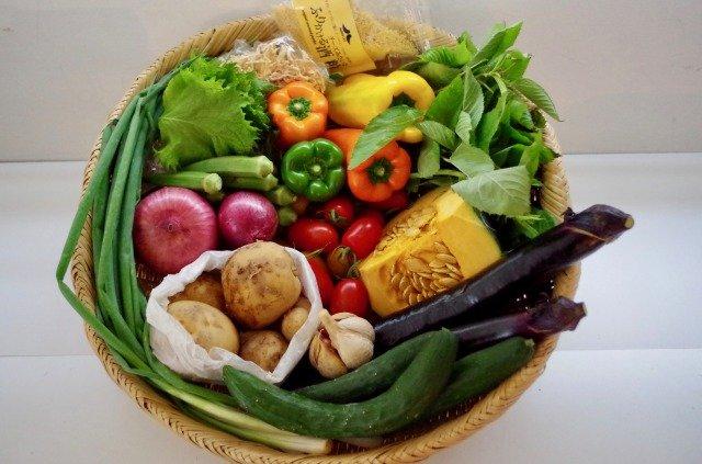高知がまるごと届きます!まる弥の高知野菜、かつおのたたき