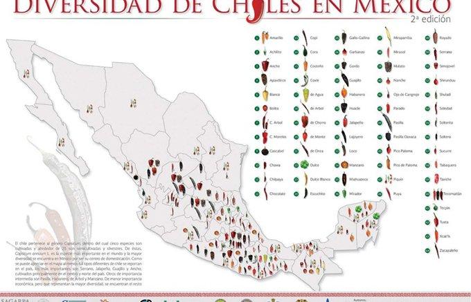チョコレートを使ったサルサもある!?メキシコの魅惑のスパイス